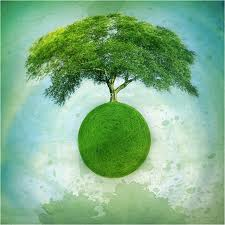 tree_planet
