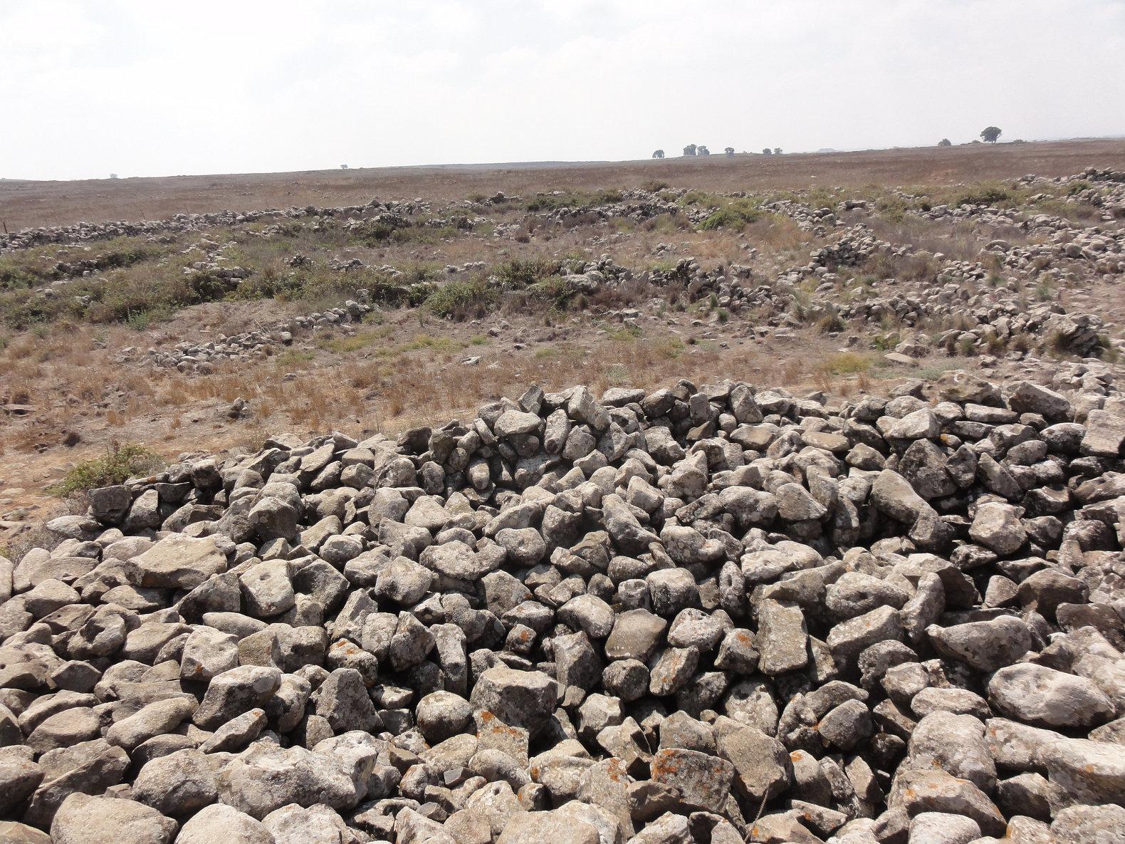stones_israel